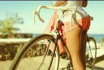 Surf & Bikes