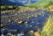 Spirit of Kwa Zulu Natal Midlands / What to see, activities, places of interest