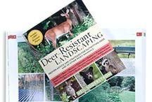 Garden ~ Deer & Rabbit Resistant / by Diane Church