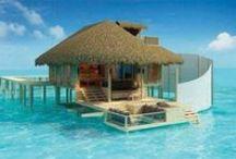 Paradise / island of Dreams