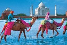 India, a World of Beauty & Colour