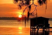 Nature & Sunsets -Pasco County, Florida