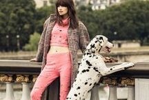 Chanel 2014 AW Editorials -1 / Pink Cropped Top and Matching Leggings with Cutouts