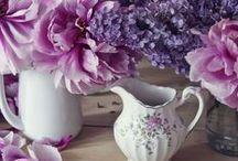 Lilac & Lavenders.❤
