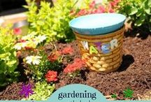 Gardening for Early Learners / Anything happening outdoors in the garden - growing, decor and fun projects.