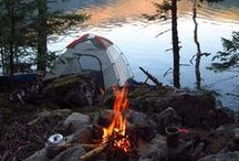 Camping / It's all about the camping - from campsites, to tents, to the best campfire food we've found / by Daisies & Pie