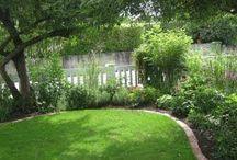 Trädgård Garden