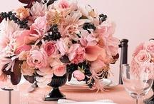 Set a Pretty Table