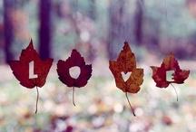 Autumn Leaves / by Landen Ellis