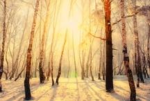 Fall /Winter vibe / by Katrina Vrebalovich