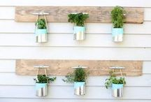 Recycled & Upcycled / Finding a greener solution for life!