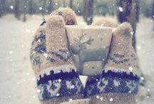 Winter wonderland / Winter, snowflakes, snow, sleigh  party....