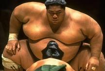 相撲/Sumo