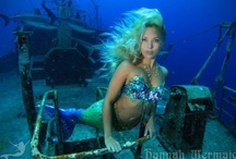 Hannah Mermaid's Underwater Adventures / Hannah swims with whales, dolphins, seals, sharks, manta rays and more!