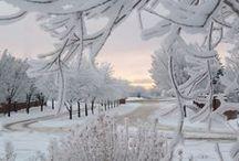 Sensational Snow!