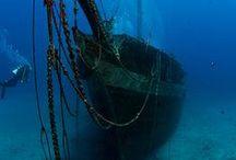 Shipwreck Savage!