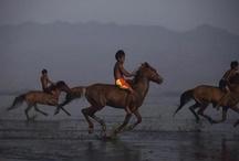 Child Jockeys / Beawiharta