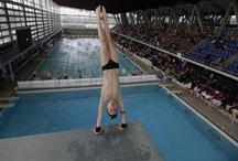 Britain's Chinese diving dreams / Stefan Wermuth