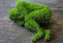 green like grass & jade