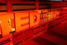 TEDActive 2013
