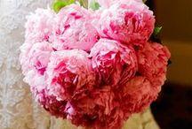 Peony Bridal Bouquets