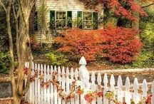 Garden Gates & Fences / by Ginger