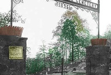 History / Historical Photos from America's First Pet Cemetery - Established in 1896 by New York City veterinarian, Dr. Samuel K. Johnson. Hartsdale is the only pet cemetery to be listed on the National Register of Historic Places.