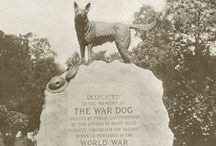 War Dog Memorial & Service Pets - Hartsdale Pet Cemetery