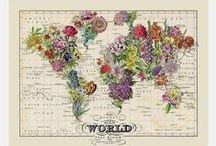 Maps // Cartes