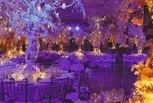 Winter Wedding Ideas / Winter wedding ideas