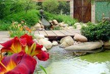 Landschaftsbau/Gärten