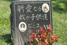 Foreign Language Pet Memorials / Memorials in foreign languages at Hartsdale Pet Cemetery