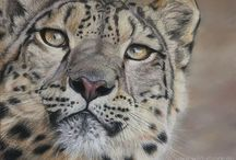 WILD CATS - Wildlife Art by Diana Höhlig / My big cat paintings