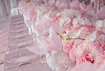 Blush Pink / Light Pink Wedding Ideas / Blush Pink & Light Pink Wedding Ideas