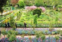 vi ~ Claude Monet ~