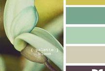 Ház színek