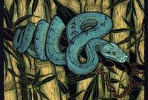 Snakes / Viewed as malevolent creatures in Western myths such as the Garden of Eden and Medusa, other cultures viewed snakes as representing the circle of life.  The coiling snake represented the cycle of life, death and rebirth, and was though to connect the earth to the underworld.