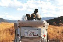 Coches, ¿Los quieres para tu boda? / Busca tu transporte perfecto
