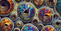 Macro & fractal
