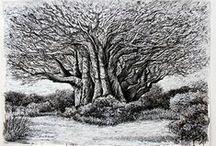 Tree Love / by Loren Hodes Art