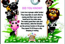 Animal Facts / We love to encourage learning by teaching kids animal facts in colorful formats! Please print and/or share!