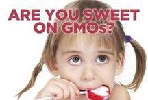 A Non-GMO Holiday / by GMO Inside