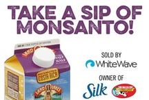 A Non-GMO Breakfast / by GMO Inside