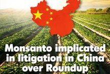GMOs around the World! / by GMO Inside