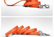 Cool collar style