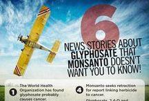 Food News / by GMO Inside