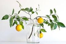 inspirations - flowers & glass