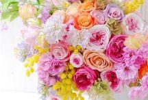 プリザーブドフラワー*Preserved flowers