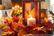 Fall / by Sandra Clark