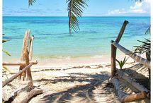 Honeymoon Dreamin' / Inspiration and ideas on our Fijian honeymoon!